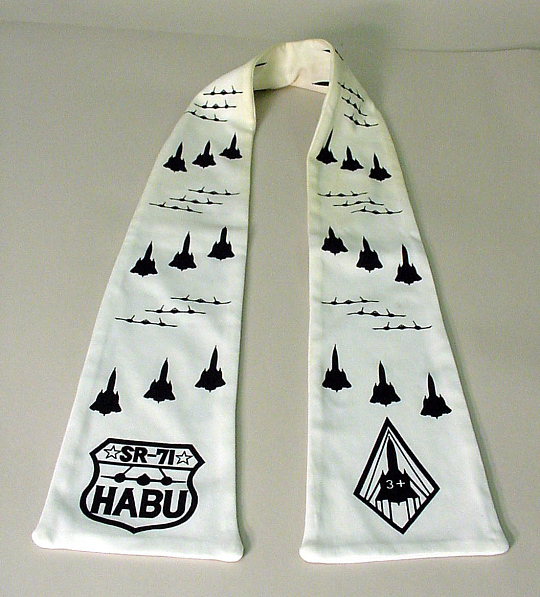 Scarf, Flying, United States Air Force