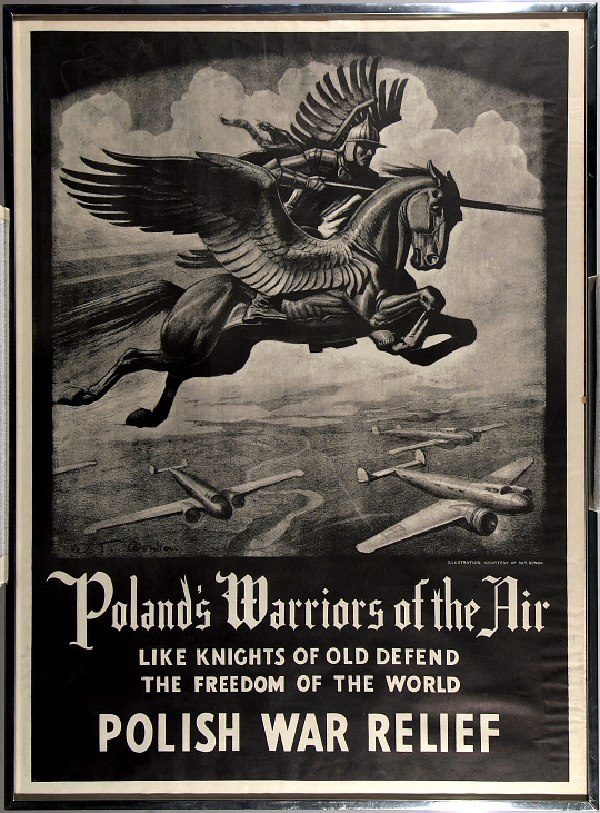 Poland's Warriors of the Air