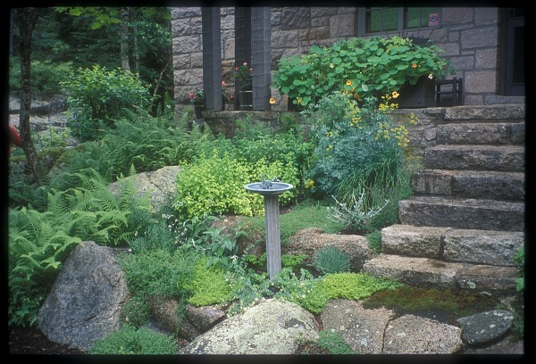 [Cairn House] [slide (photograph)]: herb and rock garden with birdbath