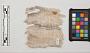 Cotton Textile Fabric Fragment