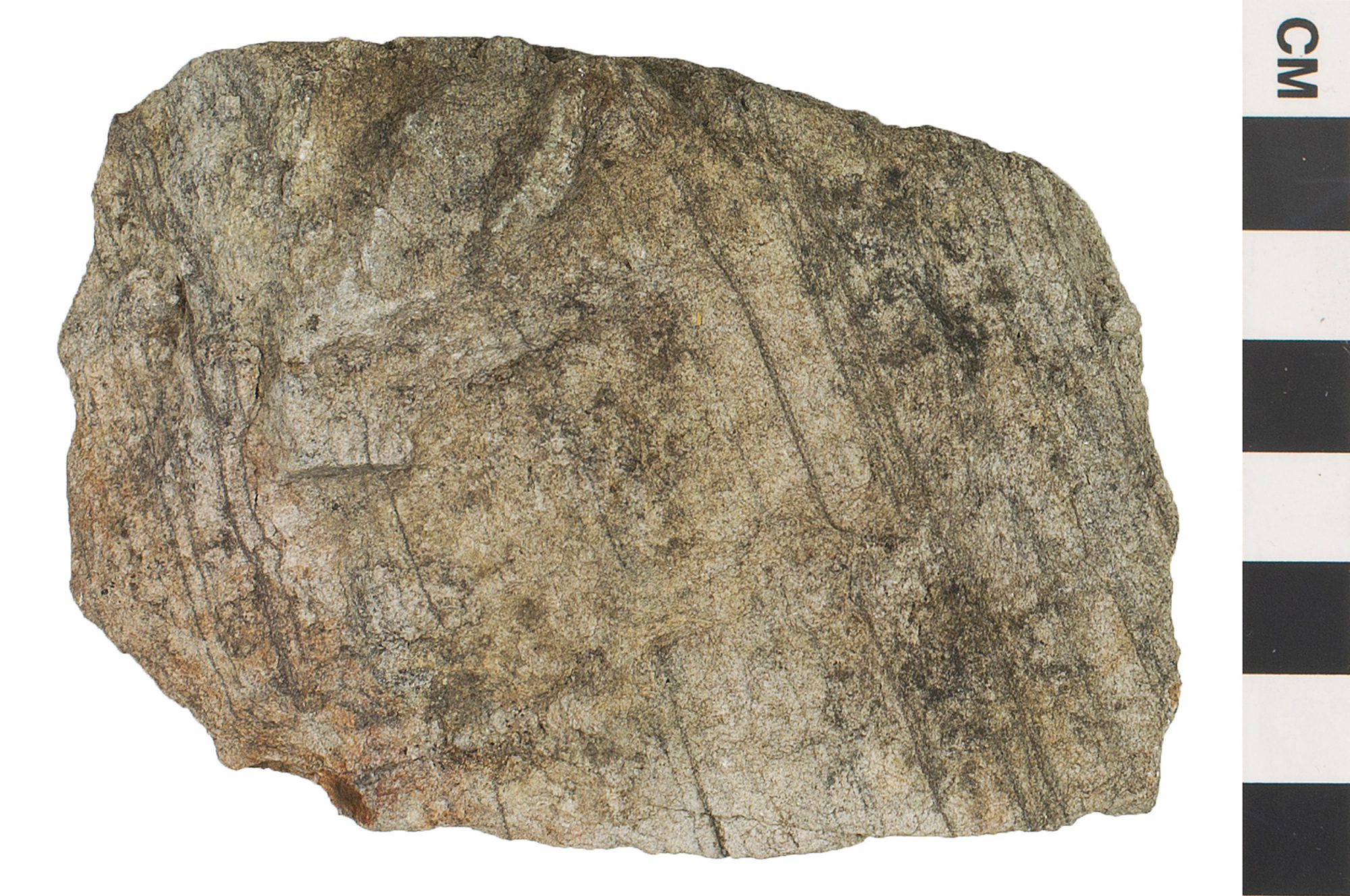 Quartzite Rocks Metamorphic Rock Quart...