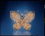 Conchita Sapphire Butterfly