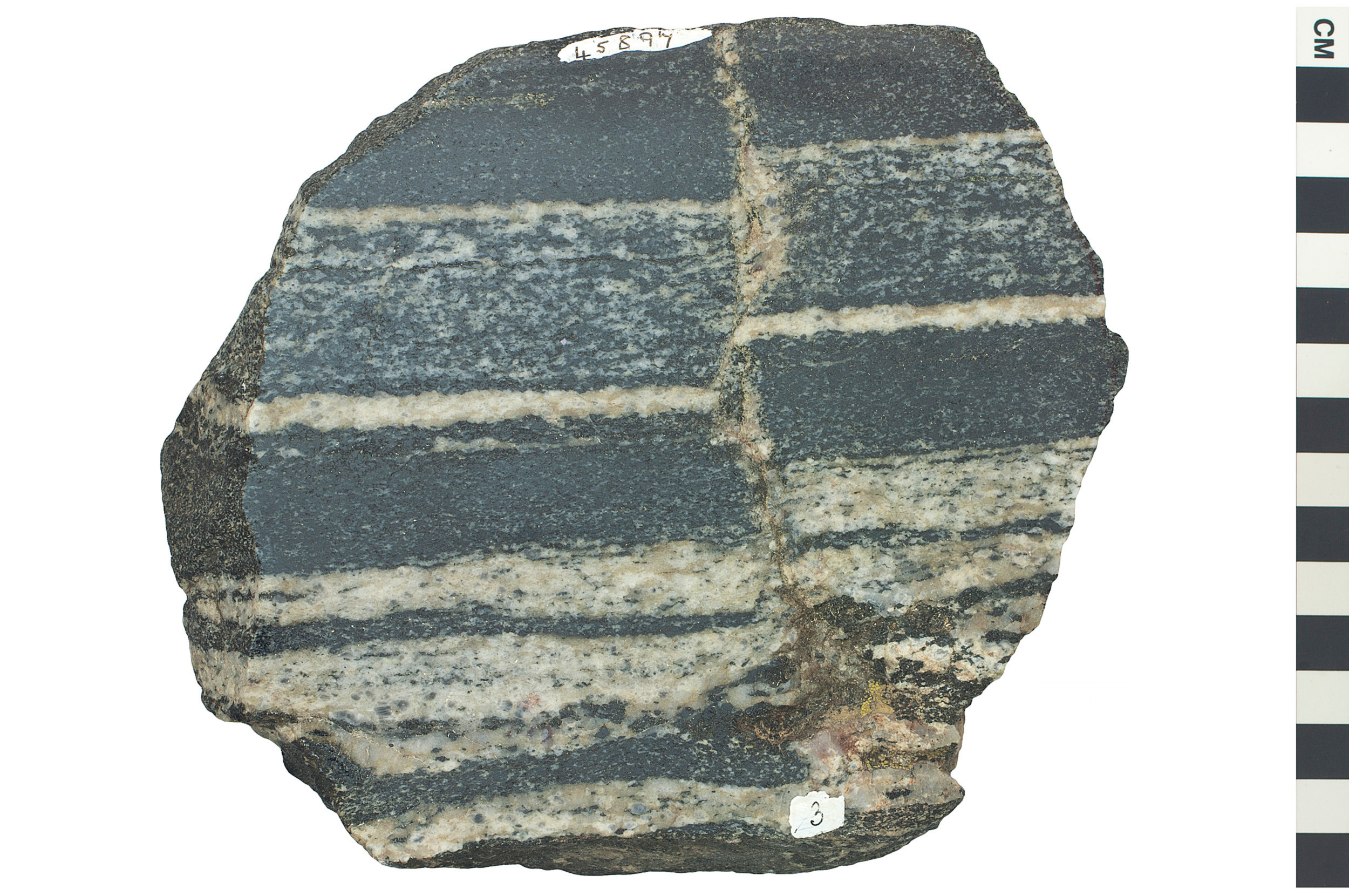 metamorphic rock Interesting facts did you know that most of the earth's crust is made of metamorphic rock well it's true even though the rock gets really, really hot and is under a whole heap of pressure it doesn't melt.