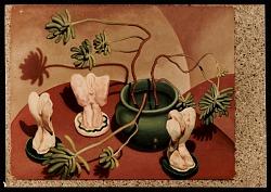 """""""Cactus Still Life"""" by Vanessa Helder"""