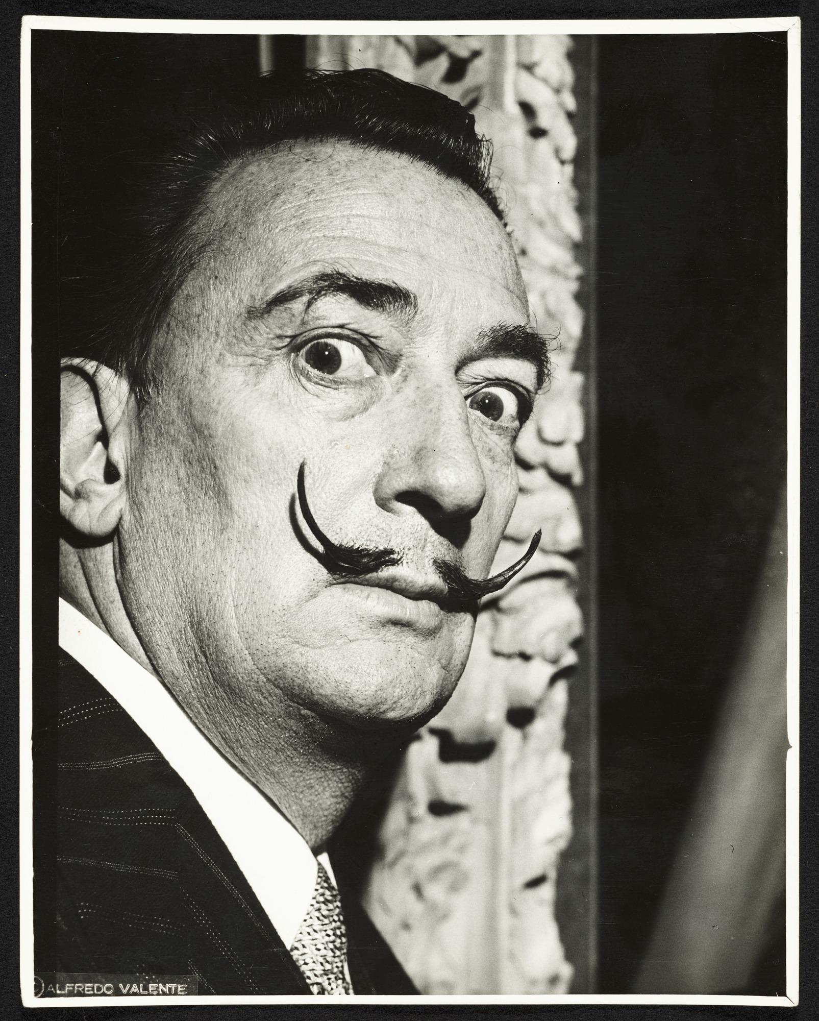 images for Salvador Dali