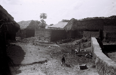 Field Work in the Western Region (Nigeria): Traditional Village Compounds