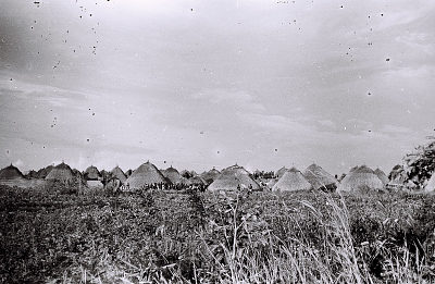 Field Work on the Benue Plateau, Northern Region (Nigeria): Village Made of Traditional Round Houses with Thatched Roofs