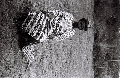 Field Work in the Western Region (Nigeria): Seated Woman (probably Yoruba Informant) with Elaborate Headdress