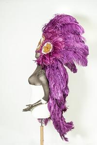 images for Mardi Gras headdress-thumbnail 6