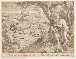 Crane Hunt using Cones, plate 28 in the Venationes Ferarum, Avium, Piscium series