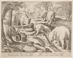 Elephants Helding Each Other out of a Trap, plate 1 from the Venationes Ferarum, Avium, Piscium series