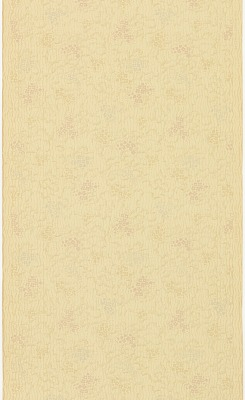 Ceiling paper
