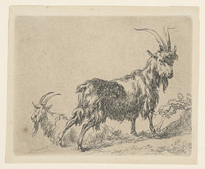 Two Goats, from Berchem's