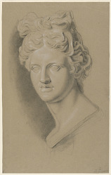 Academic Study of a Cast of a Classical Female Bust