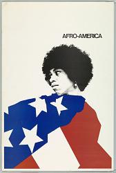Afro Politics #latinoHAC