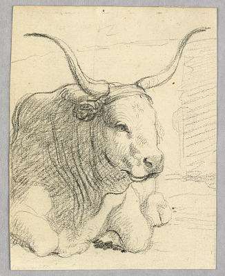 Study: a lying cow