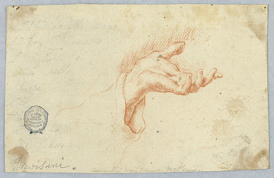 Study of a Gesturing Hand