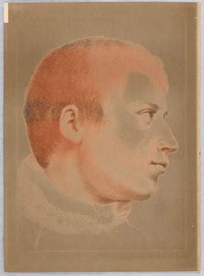 A Young Man's Head