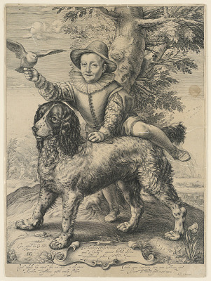 The Dog of Goltzius