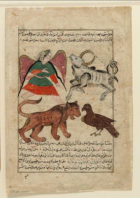 Folio from a <em>Aja'ib al-makhluqat</em> (Wonders of Creation) by al-Qazvini
