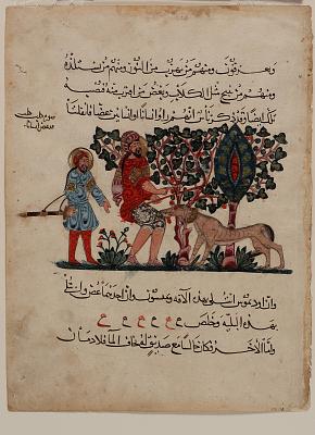 Folio from an Arabic translation of <em>De Materia Medica</em> by Dioscorides (ca. 40-90 C.E.); recto: Outdoor scene with a mad dog biting a man; verso: text