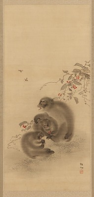Three Monkeys and Wasps