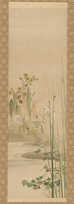 A Stream, grasses and flowering plants