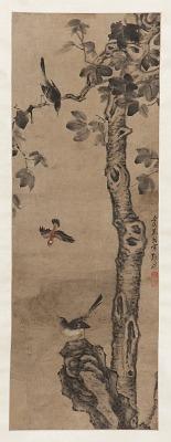 Paulownia tree, rock, and birds
