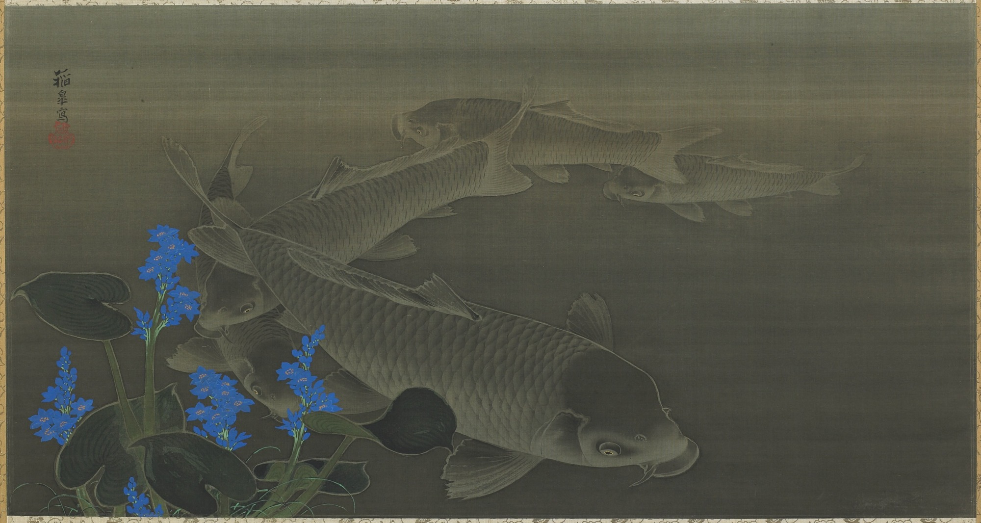 images for Carp
