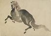 : A Running horse