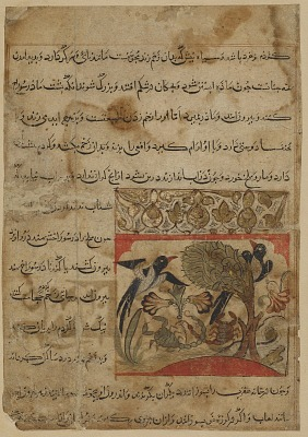 Folio from a <em>Manafi' al-hayawan</em> (Usefulness of animals) by Ibn Bakhtishu (d.1058); recto: Magpies and scorpions; verso: text, Characteristics of scorpion and crab