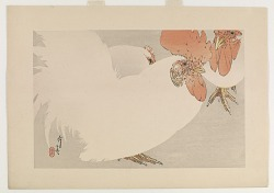 Chicken, , from the series Seitei's Flowers and Birds