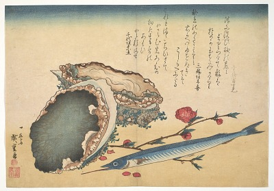 Awabi and Sayori (Abalone Haliotic tuberculata), from the <em>Great Fish Series</em>