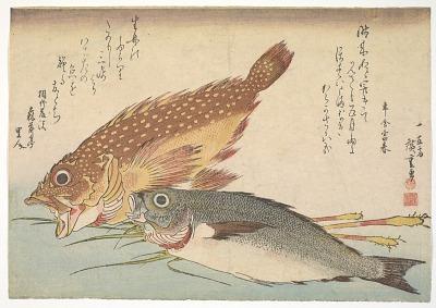 Kasago (Sebasticus marmoratus) Marbled Rockfish and Himedai (Pristipomoides sieboldii)