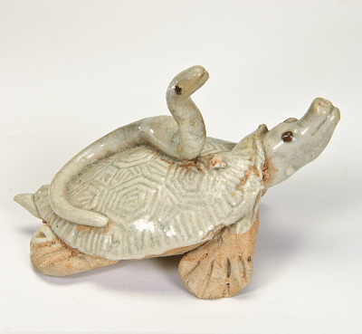 Turtle with snake