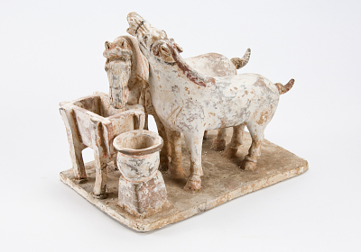 Two horses at trough