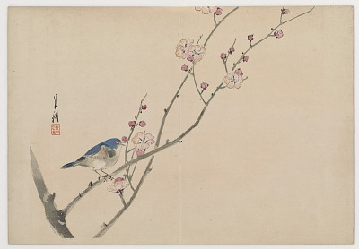 Bird on Blossoming Branch