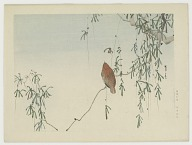 A bird on willow sprouts