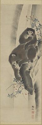 Monkeys and waterfall