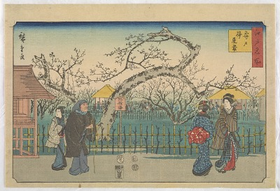 Plum gardens at Kameido, from the series, Famous places of Edo