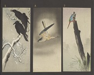 Album of sample woodblock prints of birds
