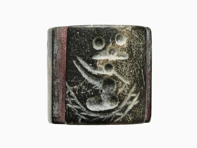 Seals, what are they image tile
