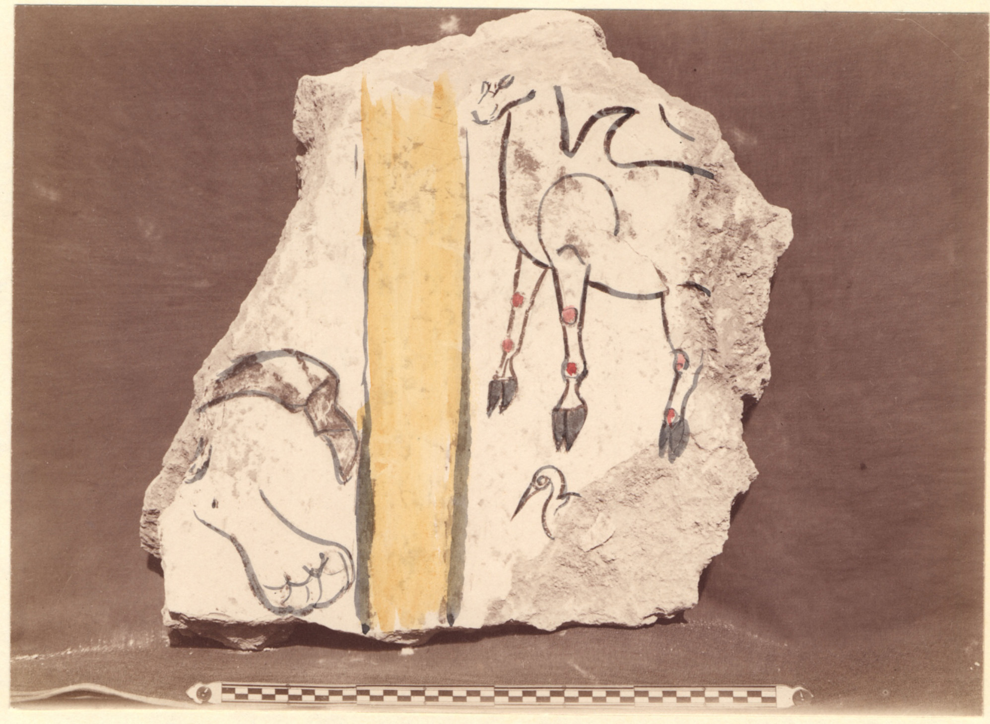 Excavation of Samarra (Iraq): Fragments of Wall-Paintings and Reconstructed Color Pattern, from the Palace of the Caliph (Dar al-Khilafa, Jawsaq al-Khaqani, Bayt al-Khalifah), Square Reception-Hall Block, Room Identified as a Harem [graphic]