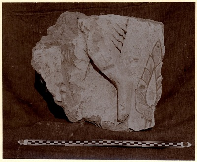 Excavation of Samarra (Iraq): Fragment of a Frieze with Camel Figure, from the Palace of the Caliph (Dar al-Khilafa, Jawsaq al-Khaqani, Bayt al-Khalifah), Small Serdab [graphic]