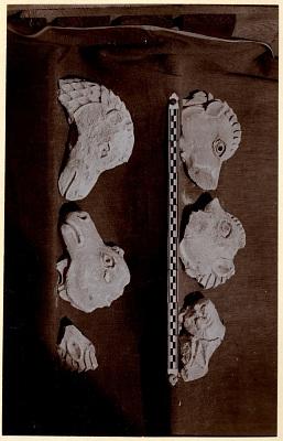 Excavation of Samarra (Iraq): Fragments of a Frieze with Camel Figures, from the Palace of the Caliph (Dar al-Khilafa, Jawsaq al-Khaqani, Bayt al-Khalifah), Small Serdab [graphic]