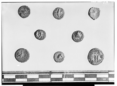 Reverse of Eight Unidentified Coins [graphic]