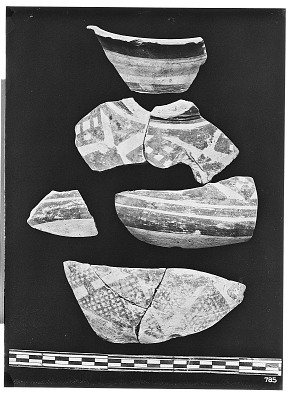 Excavation of Persepolis (Iran): Fragments of Ceramic Vessels with Painted Patterns, from Prehistoric Mound of Tal-i Bakun (PPA) [graphic]