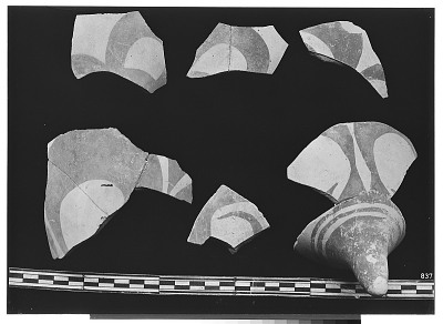 Excavation of Persepolis (Iran): Fragments of Ceramic Vessels with Painted Patterns and Animal Design, from Prehistoric Mound of Tal-i Bakun (PPA) [graphic]