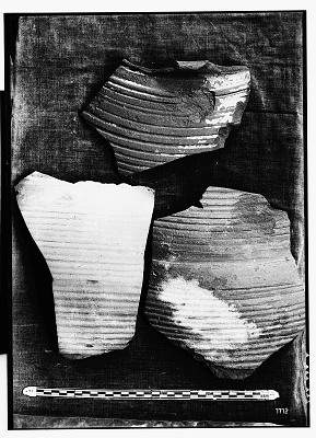 Excavation of Kuh-e Khwaja (Iran): Fragments of Unglazed Ceramic Vessels with Incised Ornamentation [graphic]
