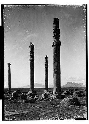 Excavation of Persepolis (Iran): Apadana, Columns of Audience Hall and West Portico: View before Excavation [graphic]